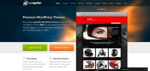 Premium-WordPress-themes-cssigniter.com_1350121292246-300x142